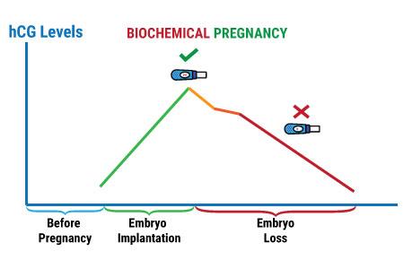 BioChemicalPrenancyTreatment